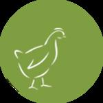 Geflügel-Bio
